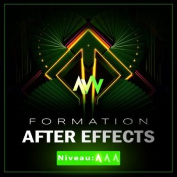 Formation AFTER-EFFECTS