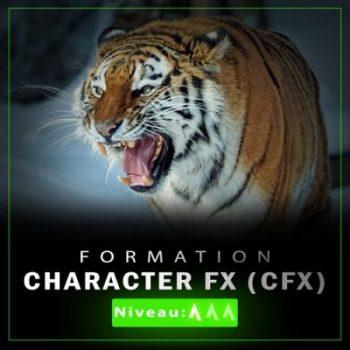 Formation CFX
