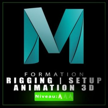 Formation RIGGING