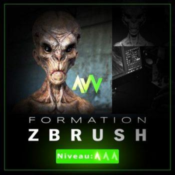 Formation ZBRUSH